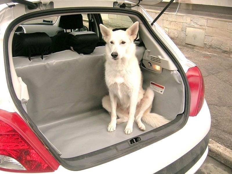 Salva baule Peugeot 207
